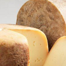 Fromages laitiers et fermiers AOP Ossau-Iraty