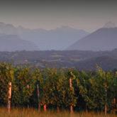 Les vins Jurançon AOC