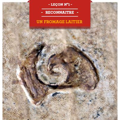 lecon1 reconnaitre fromage laitier