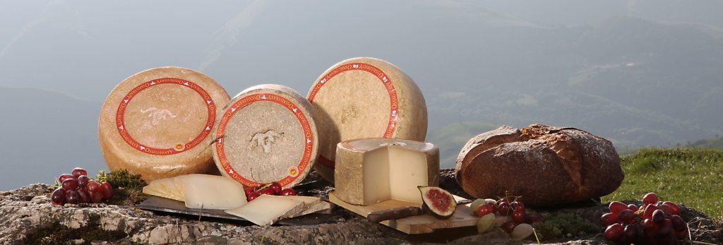 Les 5 leçons de reconnaissance des fromages Ossau-Iraty