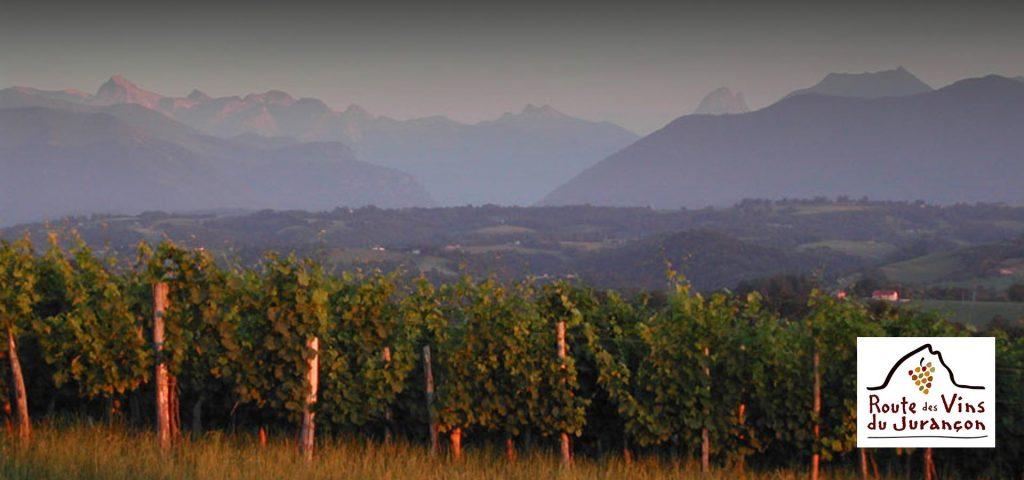 Les vins Jurançon AOC : un produit du Pays Basque & Béarn